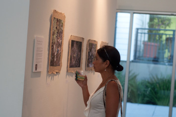 "A woman browses art at the ""Coyote Creek"" show opening in the Ar"