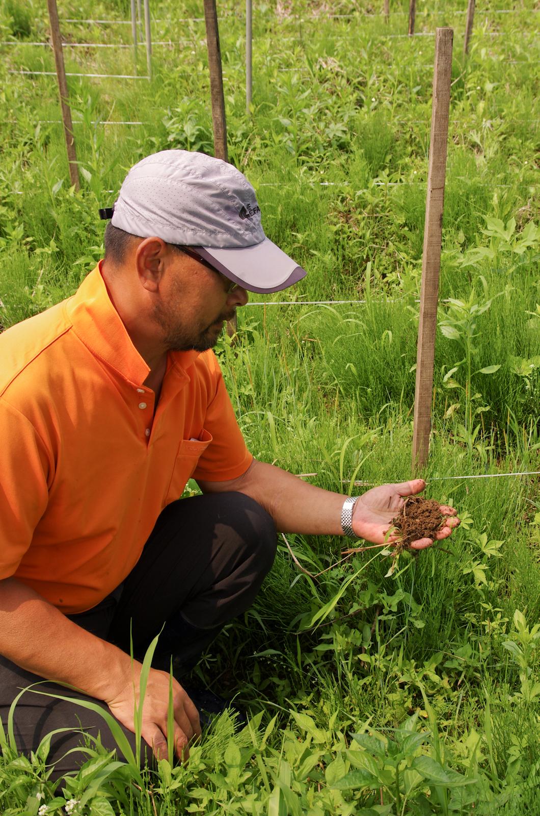 수년째 자연농을 이어가고 있는 밭의 흙을 보여주고 있는 홍려석님