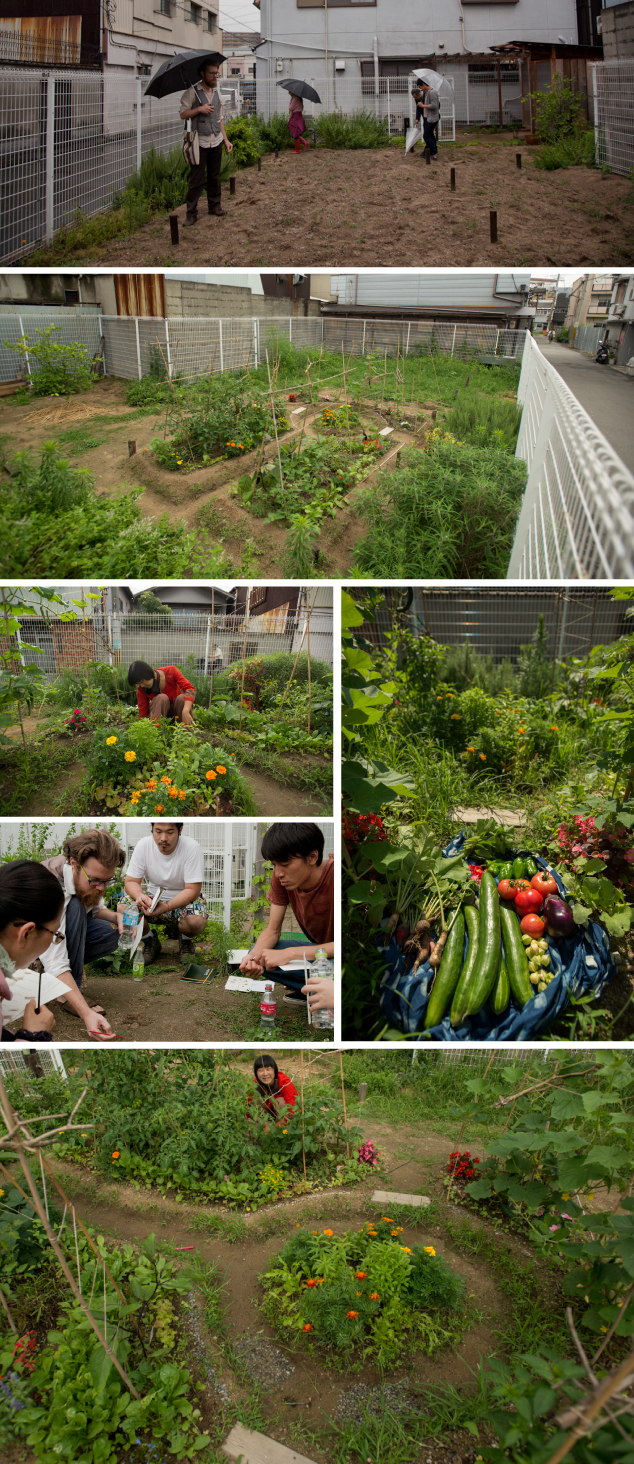 Images from the 'compassion garden' part of our REALtimeFOOD community project in Osaka, Japan (Images by SocieCity)