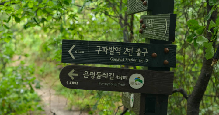 One Minute on a Forest Path to Seoul